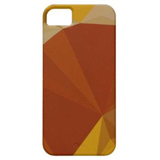 Paprika-orange Rot-abstrakter niedriger Hülle Fürs iPhone 5