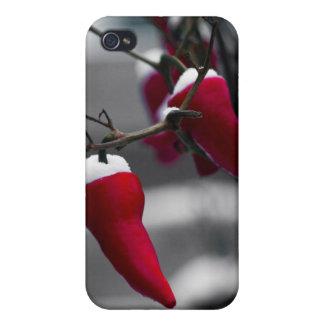 Paprika-Weihnachten iPhone 4 Hülle