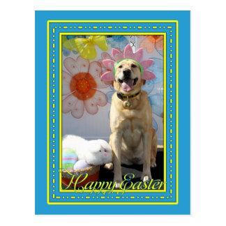 Paprikas - gelbes Labrador -12 Postkarte