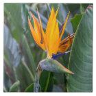 Paradiesvogel Blumen-Keramik-Fotofliese Keramikfliese