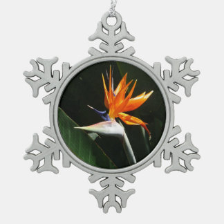 Paradiesvogel orange tropische Blume Schneeflocken Zinn-Ornament