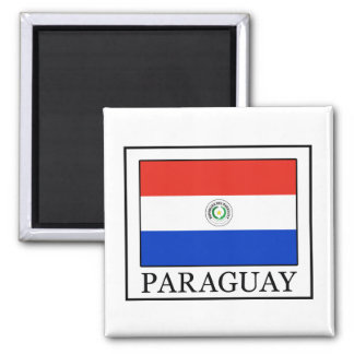 Paraguay Quadratischer Magnet