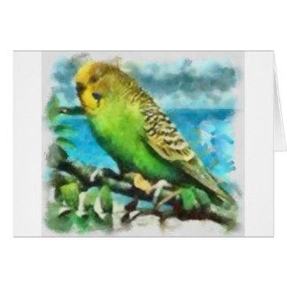 Parakeet auf der Insel Mitteilungskarte