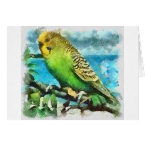 Parakeet auf der Insel Karte