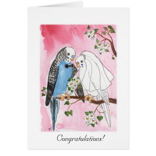 Parakeet-Hochzeitskarte Karte