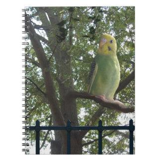 Parakeet Notizblock