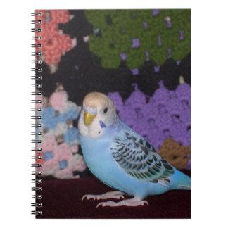 Parakeet-Notizbuch Spiral Notizbücher