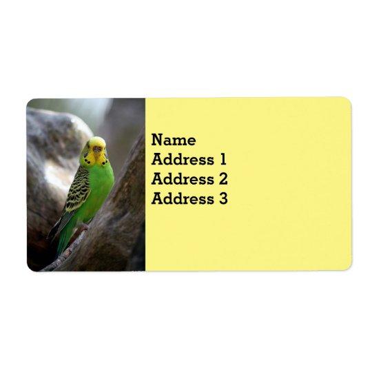 """Parakeet-Vogel-Adressen-Etiketten 2"""" L x 3,75"""" w"""
