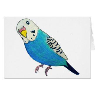 Parakeet-Zeichnen Karte
