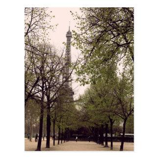 Paris durch die Bäume Postkarten