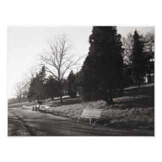 Park Bell Vue, Newport, Montag (Dezember 1977) Fotodruck