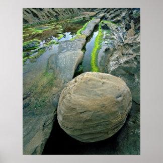 Park USA, Oregon, Ufer-Morgen-Staat Poster