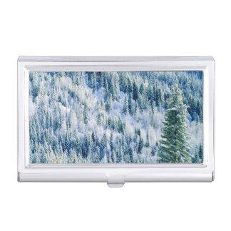 Park USA, Washington, Staat Mt. Spokane, Aspen 2 Visitenkarten Dose