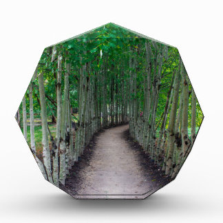 Park-Weg Acryl Auszeichnung