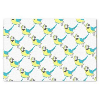 parrot seidenpapier