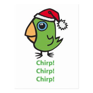 Parrotlet in der Weihnachtsmannmütze Postkarten