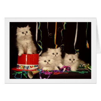 Party-Kätzchen des Sylvesterabends Karte