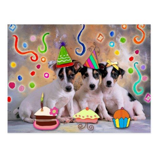 Partytiere, feiernde Hunde Postkarten