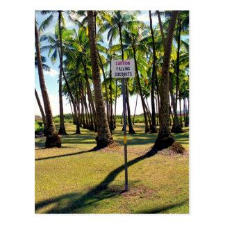 Passen Sie heraus für Faling Kokosnüsse - Postkarte