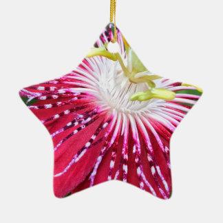 Passionflower Dble-Versah Stern-Verzierung mit Keramik Ornament
