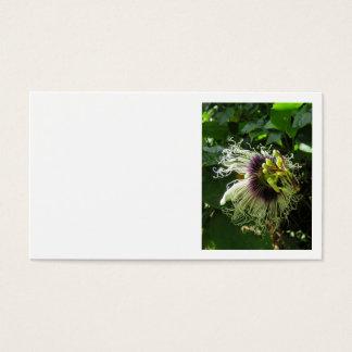 Passionfruit Blüte Visitenkarten