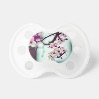 Pastellkirschblüten-Foto Schnuller
