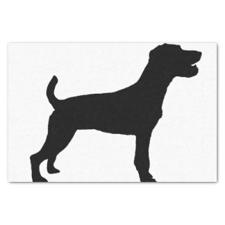 Pastorrussell-Terriersiloschwarzes Seidenpapier