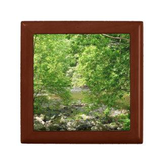 Patapsco Fluss-Ansicht-Maryland-Natur-Fotografie Erinnerungskiste