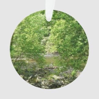 Patapsco Fluss-Ansicht-Maryland-Natur-Fotografie Ornament