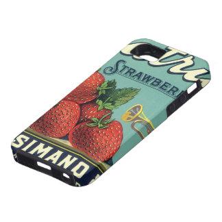 Patriot-ErdbeerVintage Frucht-Kisten-Aufkleber-Kun iPhone 5 Hüllen