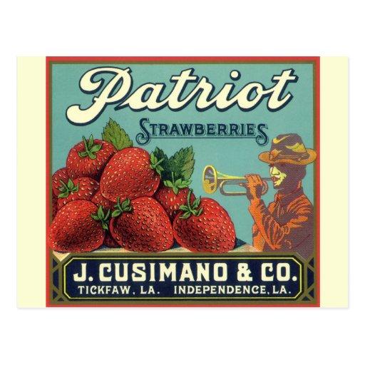 Patriot-ErdbeerVintage Postkarten