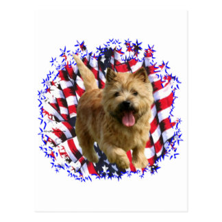 Patriot Norwichs Terrier Postkarte