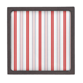 Patriotische USA-Farben in den vertikalen Streifen Schmuckkiste