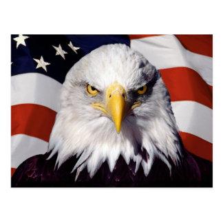 Patriotischer amerikanischer Weißkopfseeadler Postkarte