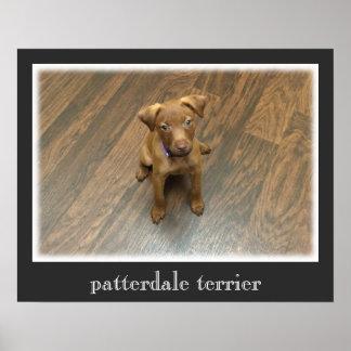 Patterdale Terrier Plakat - dunkelgraue Grenze