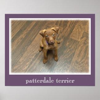 Patterdale Terrier-Plakat - lila Grenze Poster