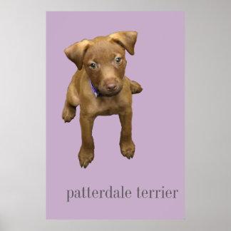 Patterdale Terrier Welpen-Plakat Poster
