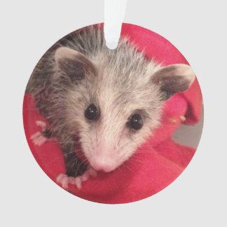 Paulee der kleine O'Possum von Südindiana Ornament