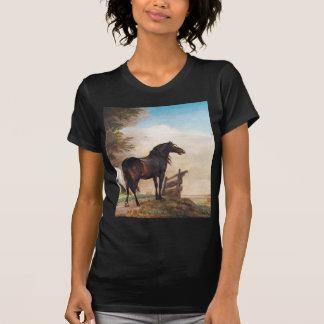 Paulus Töpfer-Pferde auf einem Gebiet T-Shirt
