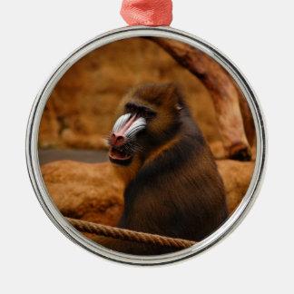 Pavian/Pavian Silbernes Ornament