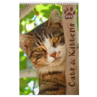 Pawsitively Katzen-und Kätzchen-2018 Kalender