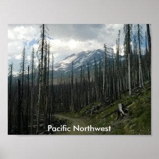 Pazifische Nordwesten-Rückseiten-Straßen-Schönheit Poster