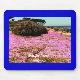 Pazifische Waldungs-Rosa-Blumen