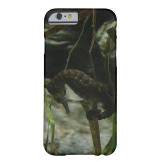 Pazifischer Seepferd-Telefon-Kasten Barely There iPhone 6 Hülle