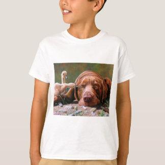 Pecking Auftrag, Schokoladen-Labrador und T-Shirt