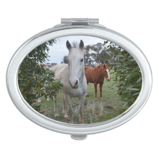 Peekaboo-Pferde, Taschenspiegel