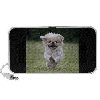 Pekingese Hundegekritzel-Lautsprecher, niedliches  Tragbare Lautsprecher