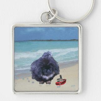 Pekingese Welpe am Strand Schlüsselanhänger