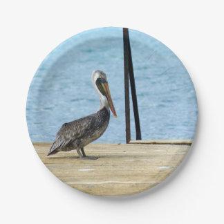 Pelikan auf dem Pier, Curaçao Karibisches Meer, Pappteller