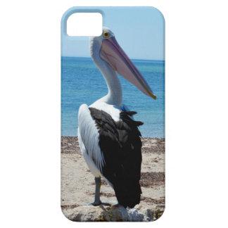 Pelikan auf Strand-Felsen, Etui Fürs iPhone 5